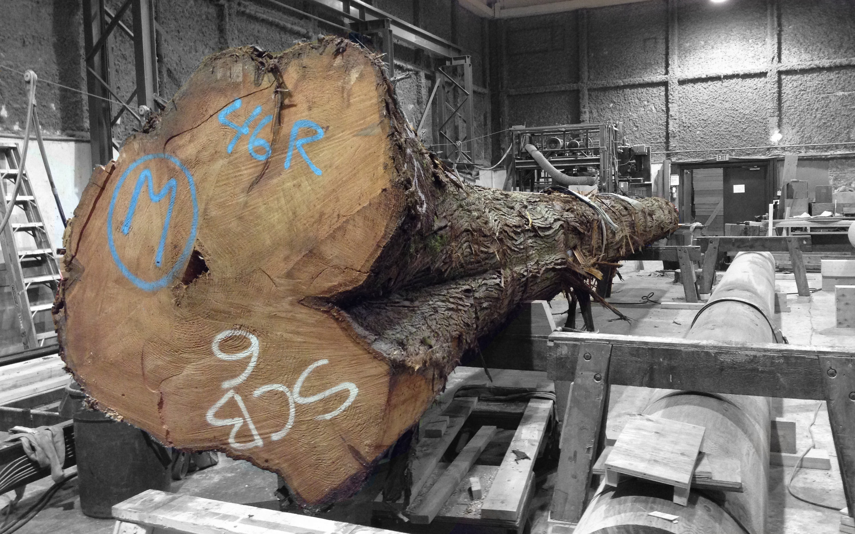 Logs for Stress skin panels cost